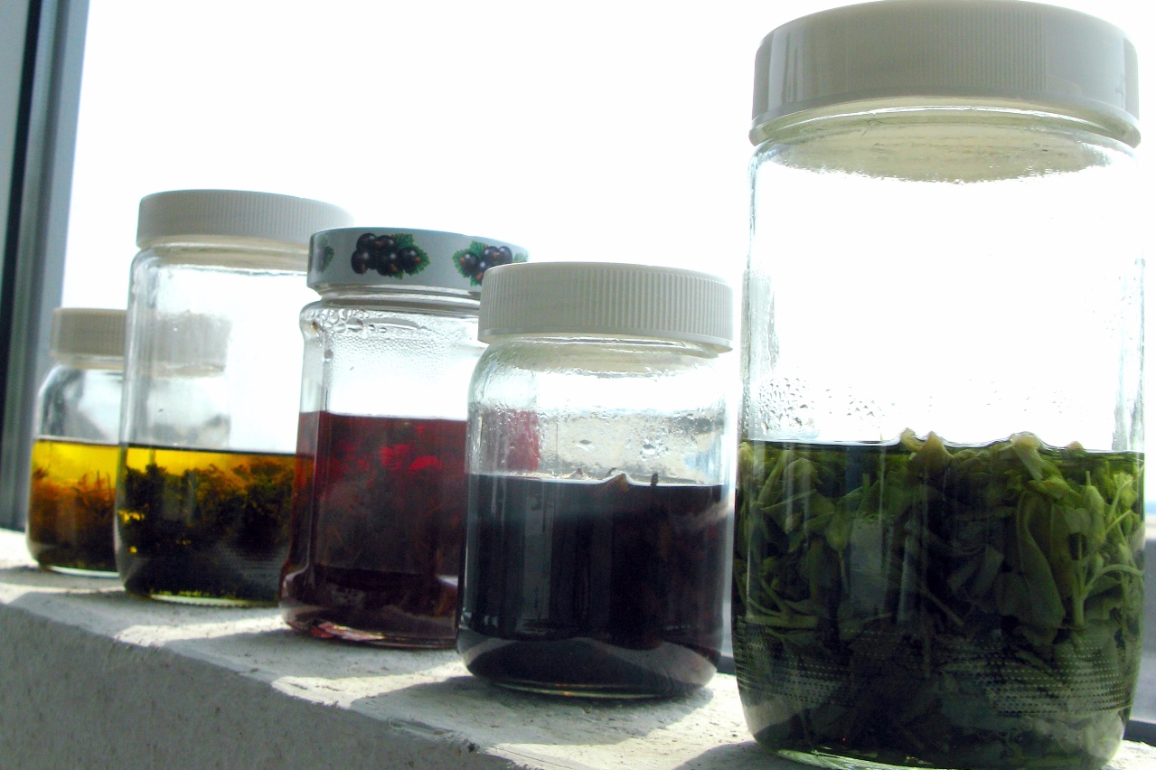 priprava tinktur a olejov