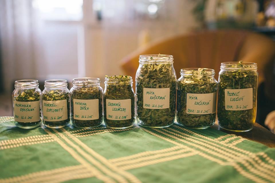Jankina zbierka byliniek